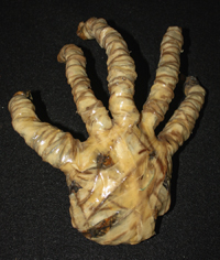 Hand of KGB Agent